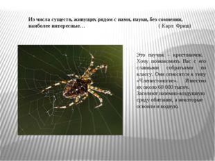 Из числа существ, живущих рядом с нами, пауки, без сомнения, наиболее интерес