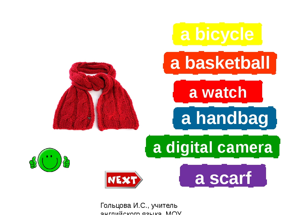 a bicycle a basketball a watch a handbag a digital camera a scarf What is it?...
