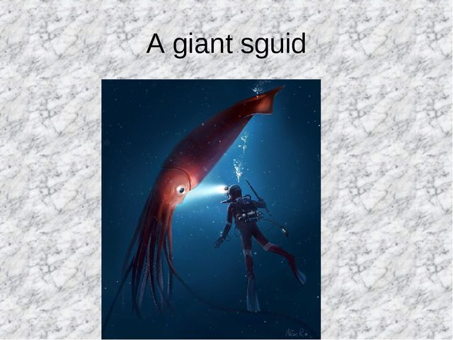 A giant sguid