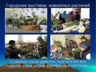 Городские выставки комнатных растений. Городские выставки комнатных растений
