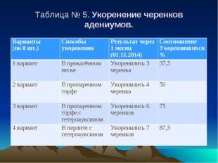 Таблица № 5. Укоренение черенков адениумов. Варианты (по 8 шт.)Способы укоре