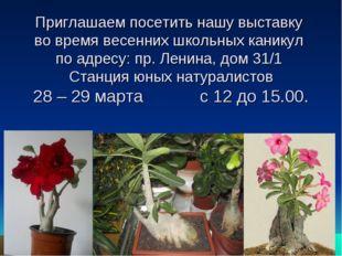 Приглашаем посетить нашу выставку во время весенних школьных каникул по адрес