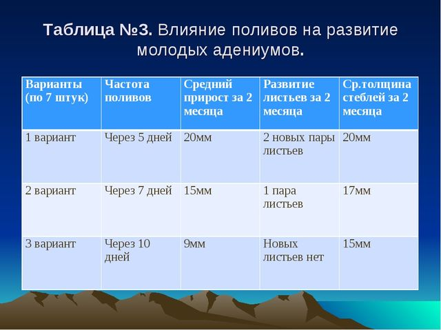 Таблица №3. Влияние поливов на развитие молодых адениумов. Варианты (по 7 шт...