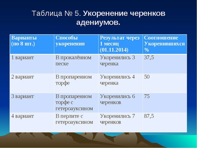 Таблица № 5. Укоренение черенков адениумов. Варианты (по 8 шт.)Способы укоре...