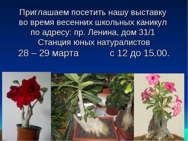 Приглашаем посетить нашу выставку во время весенних школьных каникул по адрес...