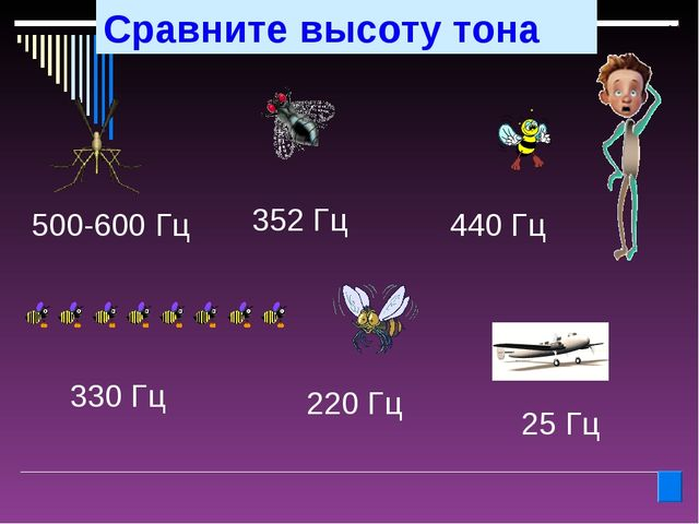 Сравните высоту тона 500-600 Гц 440 Гц 330 Гц 220 Гц 25 Гц 352 Гц