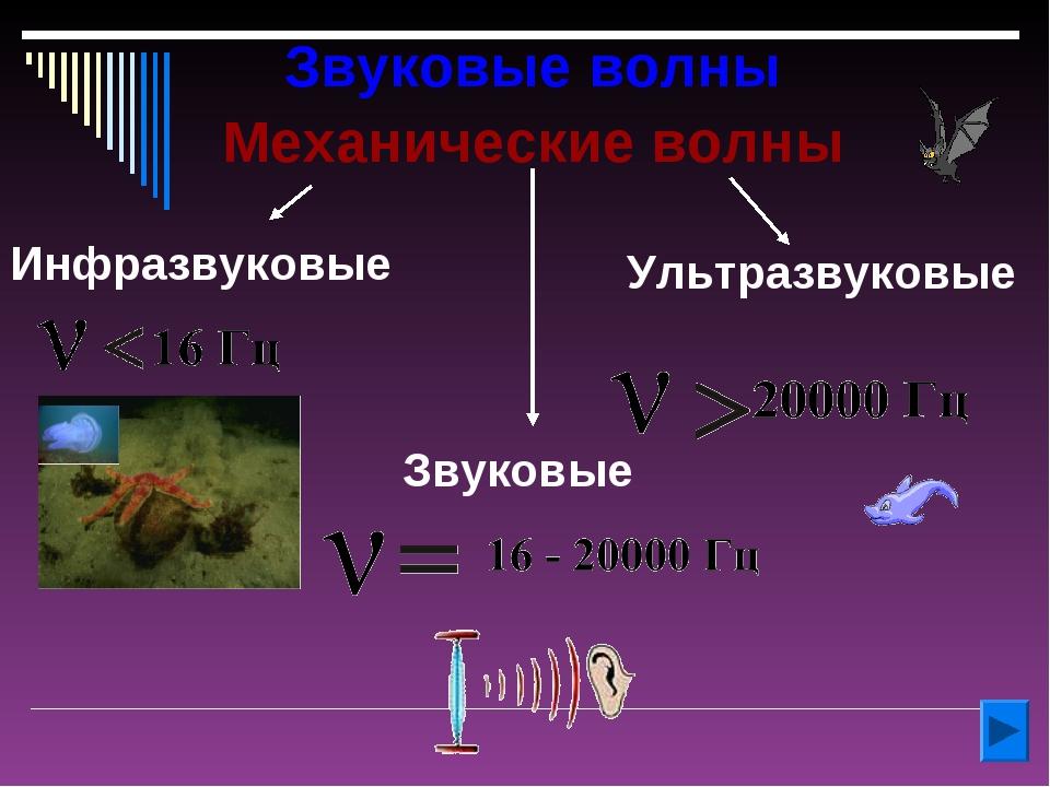 Звуковые волны Механические волны Инфразвуковые Ультразвуковые Звуковые