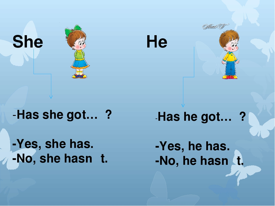 She He -Has she got… ? -Yes, she has. -No, she hasn 't. -Has he got… ? -Yes,...