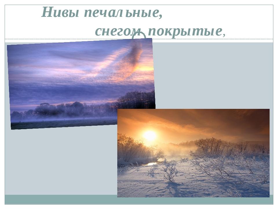 Нивы печальные, снегом покрытые,