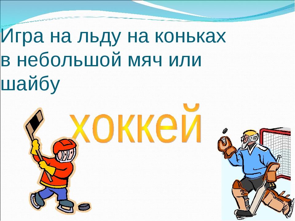 Игра на льду на коньках в небольшой мяч или шайбу