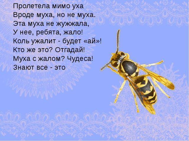 Пролетела мимо уха Вроде муха, но не муха. Эта муха не жужжала, У нее, ребята...