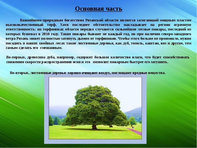 Основная часть Важнейшим природным богатством Рязанской области является зале...