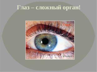 Глаз – сложный орган!