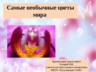 Самые необычные цветы мира Презентацию подготовила Куприй Н.И, учитель русско