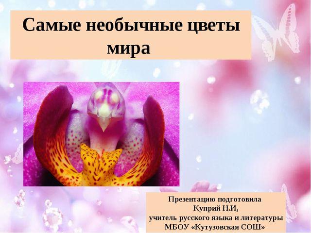 Самые необычные цветы мира Презентацию подготовила Куприй Н.И, учитель русско...