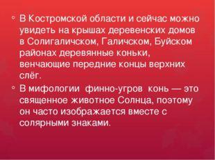 В Костромской области и сейчас можно увидеть на крышах деревенских домов в С