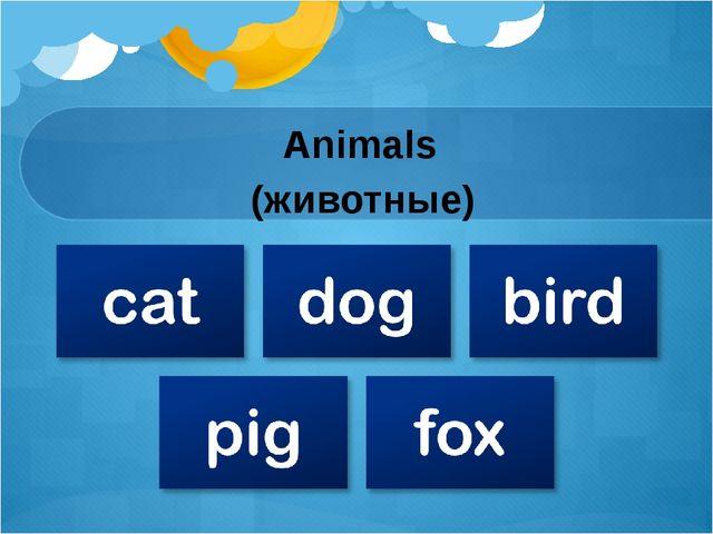 Animals (животные)