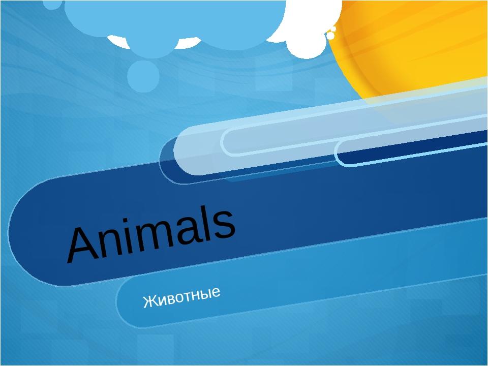 Animals Животные