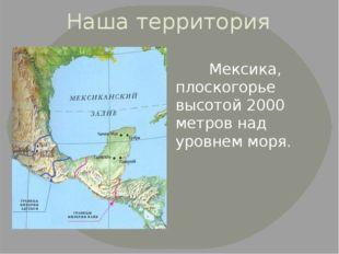 Наша территория Мексика, плоскогорье высотой 2000 метров над уровнем моря.