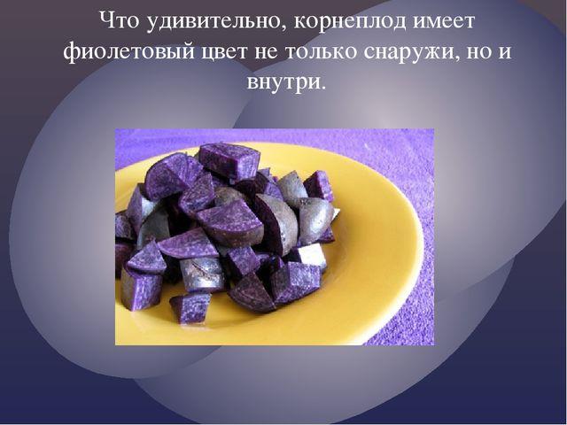 Что удивительно, корнеплод имеет фиолетовый цвет не только снаружи, но и внут...
