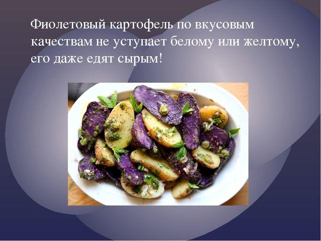 Фиолетовый картофель по вкусовым качествам не уступает белому или желтому, ег...