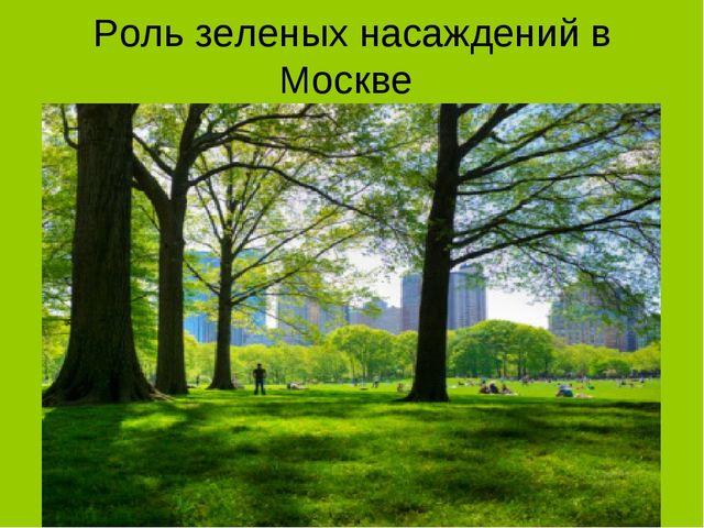 Роль зеленых насаждений в Москве
