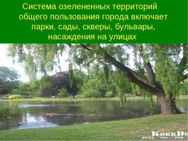 Система озелененных территорий общего пользования города включает парки, сады...