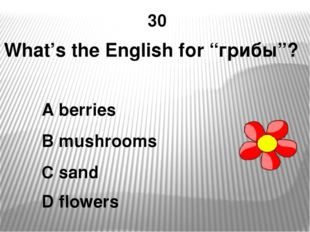 "30 What's the English for ""грибы""? A berries B mushrooms C sand D flowers"
