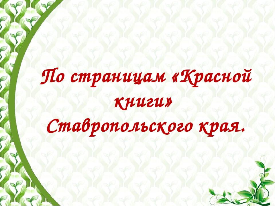 По страницам «Красной книги» Ставропольского края.
