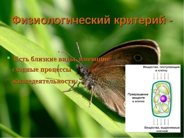 Физиологический критерий - Есть близкие виды, имеющие сходные процессы жизнед...