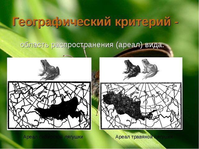 Географический критерий - область распространения (ареал) вида. Ареал сибирск...