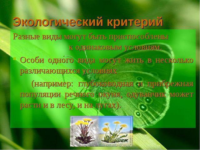 Экологический критерий Разные виды могут быть приспособлены к одинаковым усло...