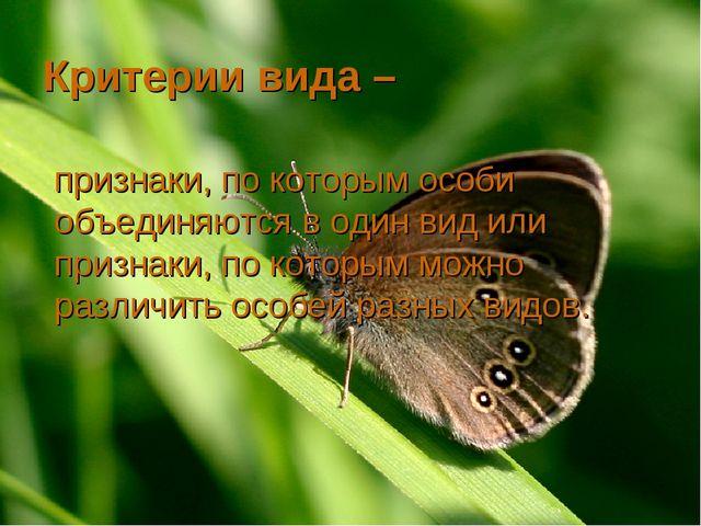 Критерии вида – признаки, по которым особи объединяются в один вид или призна...