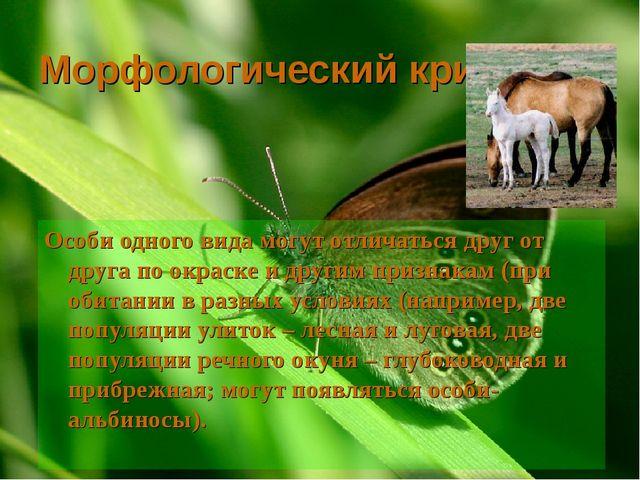 Морфологический критерий Особи одного вида могут отличаться друг от друга по...