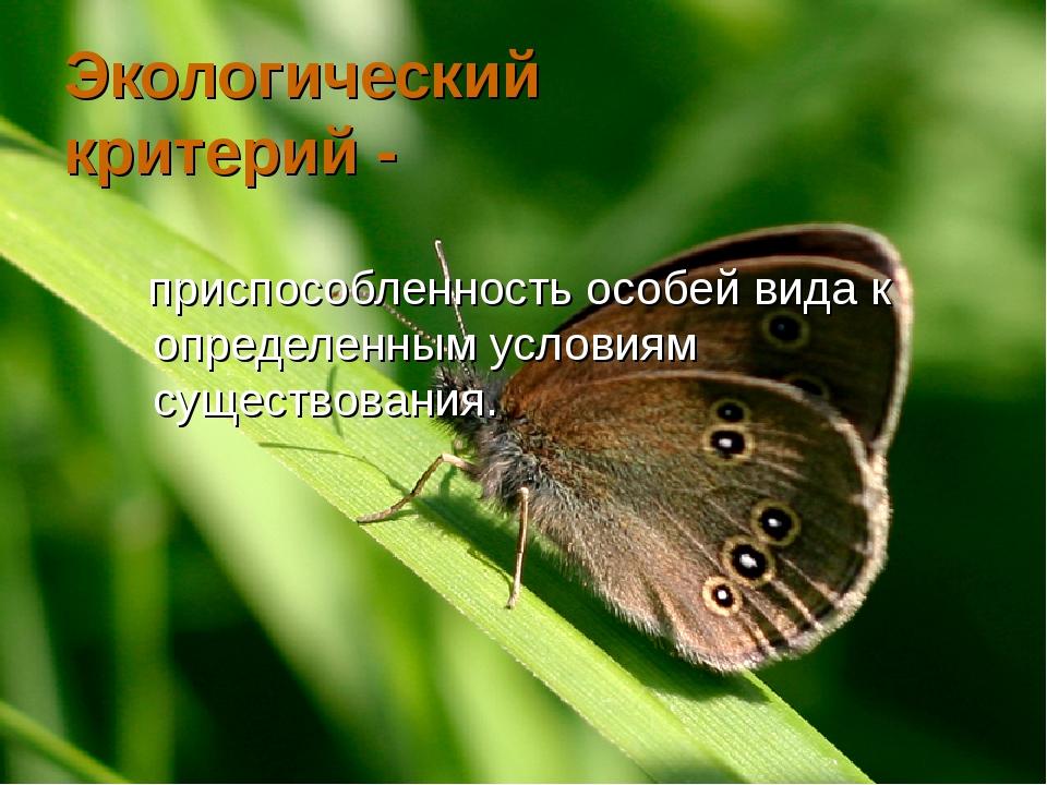Экологический критерий - приспособленность особей вида к определенным условия...