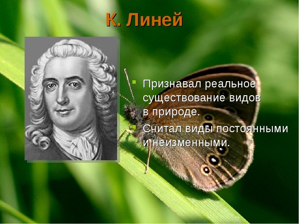 К. Линей Признавал реальное существование видов в природе. Считал виды постоя...