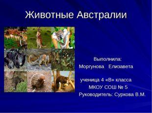 Животные Австралии Выполнила: Моргунова Елизавета ученица 4 «В» класса МКОУ С