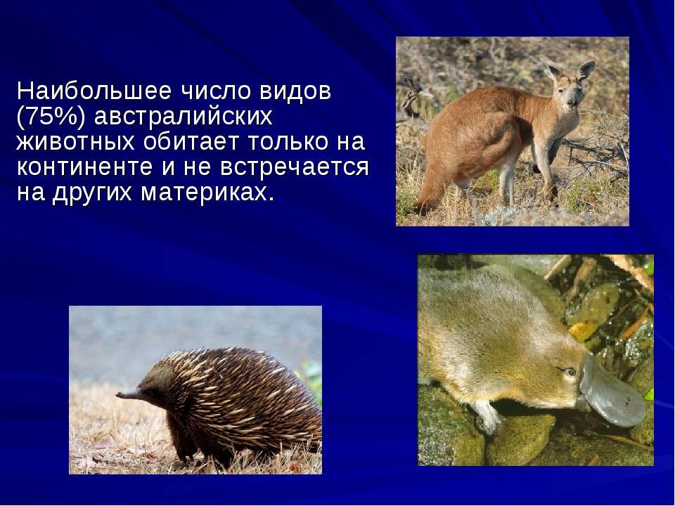 Наибольшее число видов (75%) австралийских животных обитает только на контин...