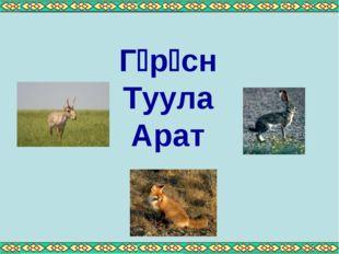 Грсн Туула Арат