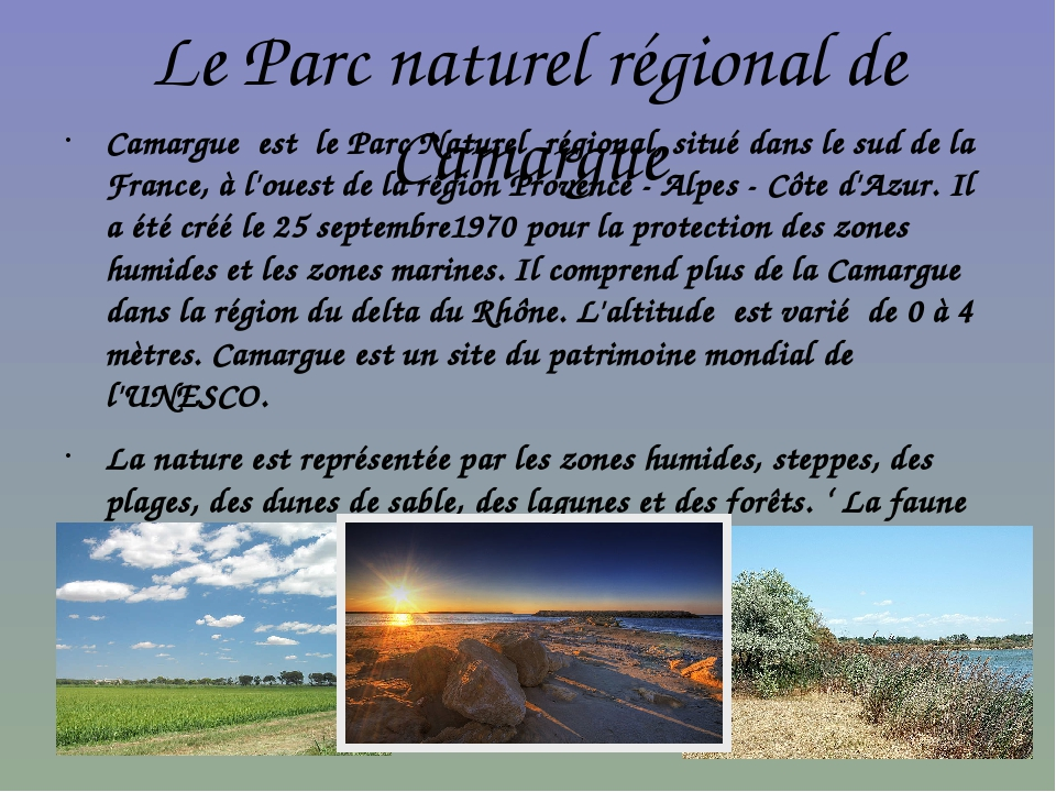 Le Parc naturel régional de Camargue Camargue est le Parc Naturel régional, s...