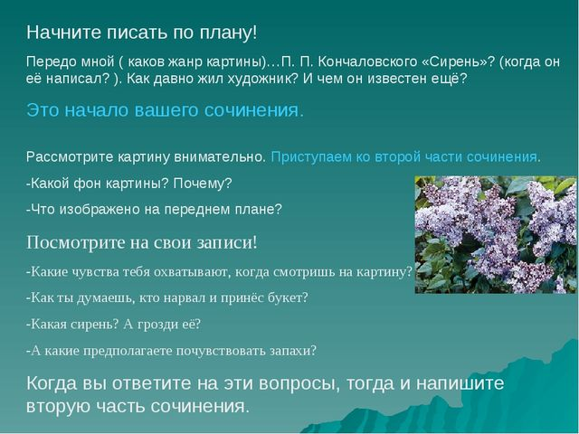 Начните писать по плану! Передо мной ( каков жанр картины)…П. П. Кончаловског...