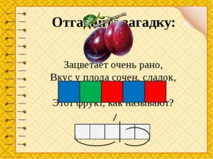 Зацветает очень рано, Вкус у плода сочен, сладок, Синевою отливает, Этот фрук