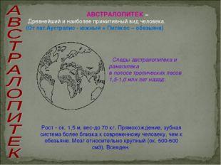 АВСТРАЛОПИТЕК – Древнейший и наиболее примитивный вид человека. (От лат.Аустр