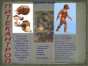 Древние люди Сто лет тому назад врач и анатом Э. Дюбуа обнаружил на острове Я