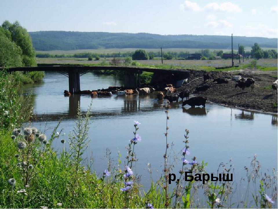 погода барыш ульяновской области коттеджа крупного предприятия