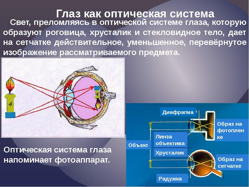 Глаз как оптическая система Свет, преломляясь в оптической системе глаза, кот...