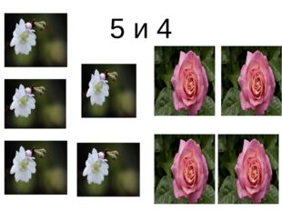 5 и 4