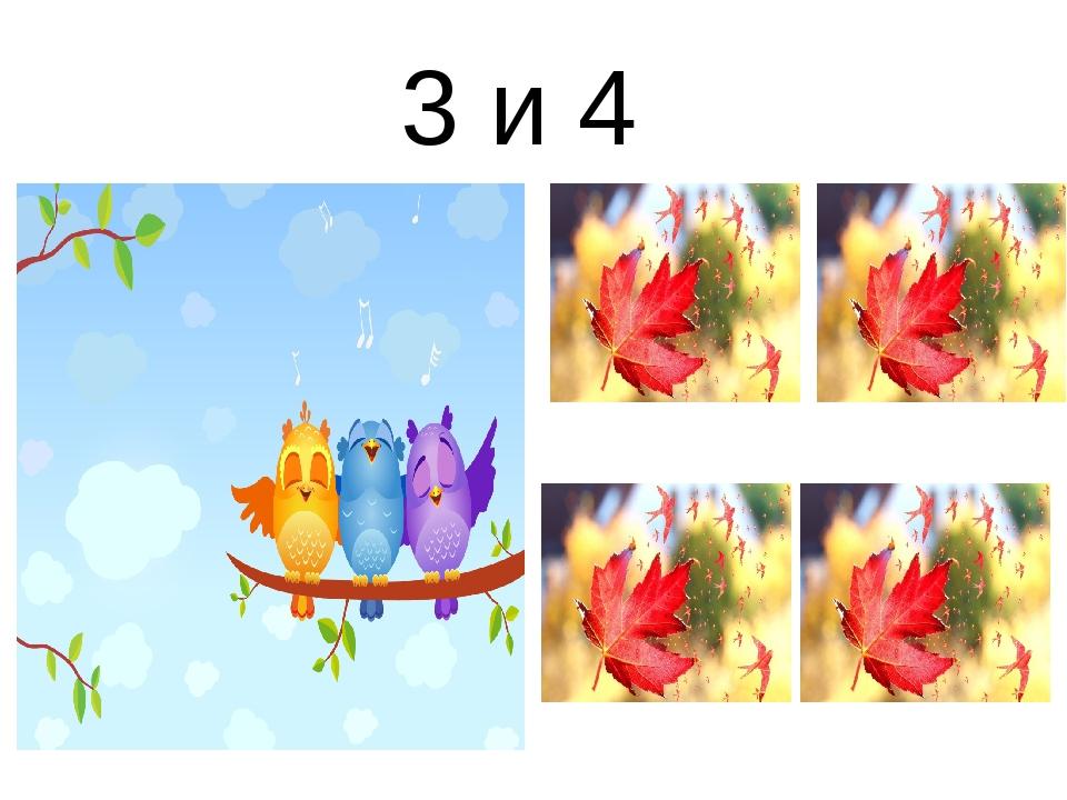 3 и 4