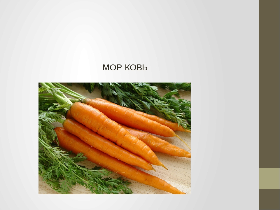 МОР-КОВЬ
