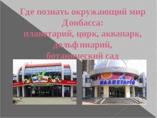 Где познать окружающий мир Донбасса: планетарий, цирк, аквапарк, дельфинарий,